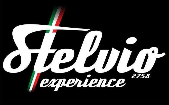 Stelvio Experience Logo